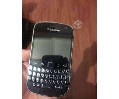 Blackberry, VIII Biobío