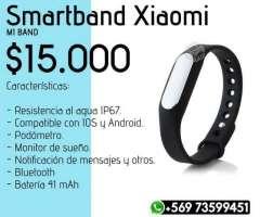 Smartband Xiaomi Mi Band, XIV Los Ríos