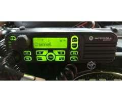 Motorola dgp 6100+ - La Granja